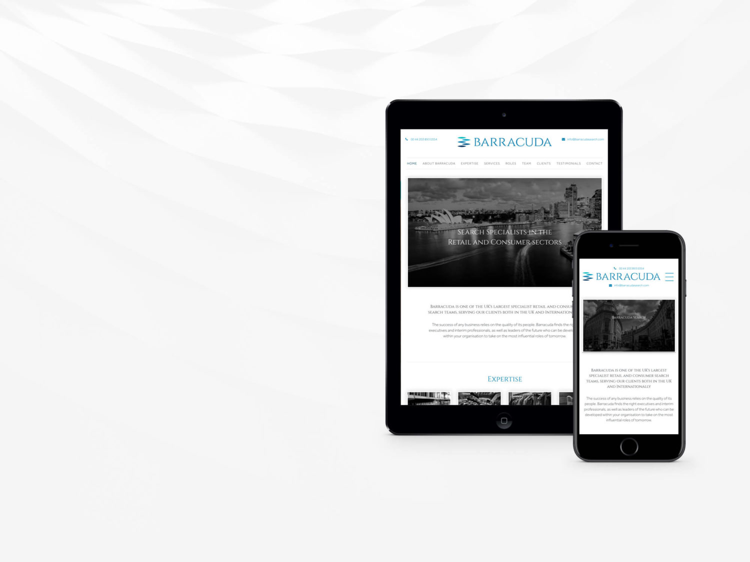 Custom WordPress website for Barracuda Search by Supersonic Playground